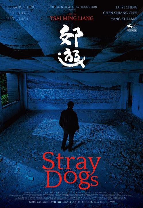 Stray Dogs-2013